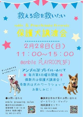 保護犬譲渡会が開催されます
