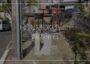 本牧亀の子石神社|本牧とわたし